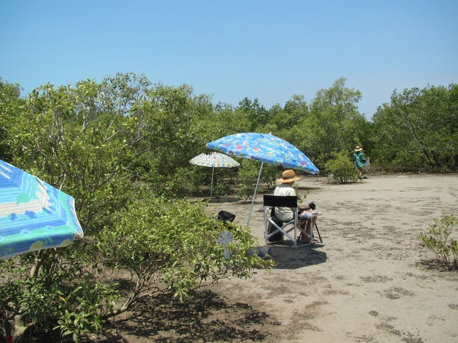 Mudflat with umbrellas